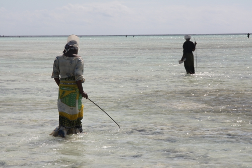 Zanzibar:Mazzella8.JPG