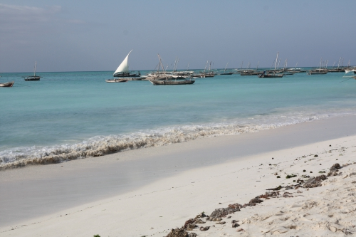Zanzibar:Mazzella10.JPG