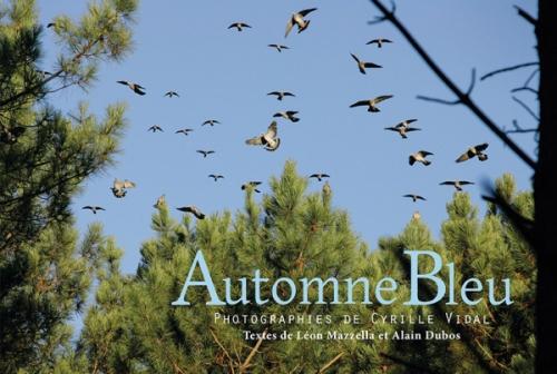 automne-bleu.jpg